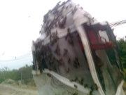 eliminando emjambre de abejas