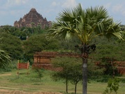 kotar travels & tour