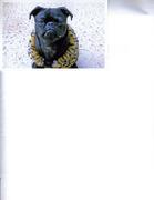 Josie in a Faux Tiger Fur Sweater