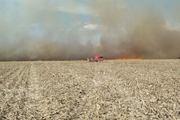 Incendio de maizales, toda una columna de fuego acercandose