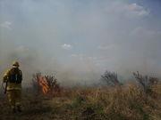 Combatiendo un incendio de campo bajo el sofocante sol
