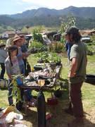 9 taller de agricultura orgánica urbana