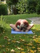 Yoga im schönen Garten....