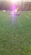 Violet Fire 2