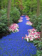 floral road