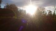 Golden White Light and Violet Ray BLESSINGS