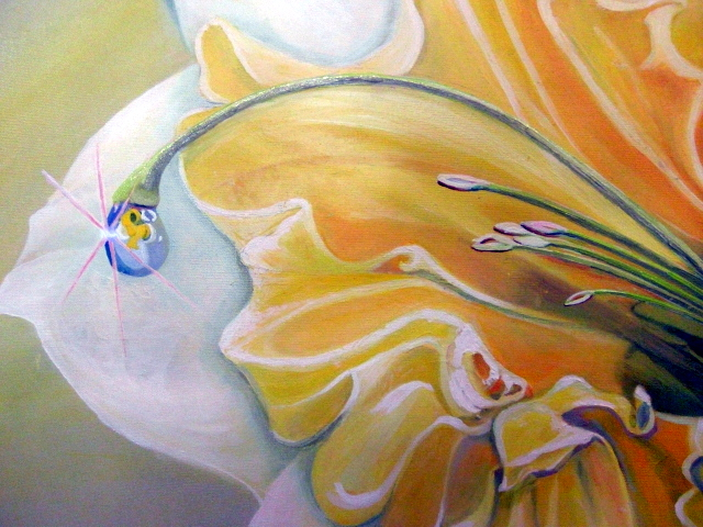 Daffodils6 Earth
