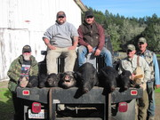 Three days of hog hunting
