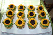 Sunflowers for the MS bake sale