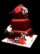Delphinium&Roses