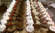 Individual cupcakes.. LOTS