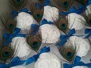 Peacock Anniversary 11-2011