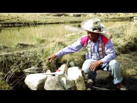 Agua ...Video 4: construcción, operación y mantenimiento de qochas---