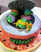 TMNT Cake (1)