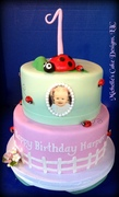 Lady bug 1st birthday cake