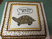 red eared turtle cake
