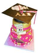 FSU Grad cake