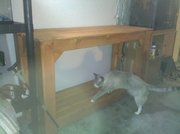 New Table/Fish stand
