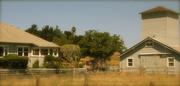 Sustainable School Street Farm presents: