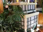 New indoor winter resort