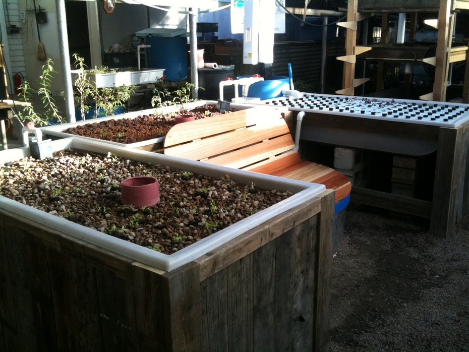 Colorado Aquaponics Bench System