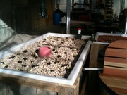 gravel grow bed in bench system
