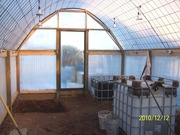 AB's Greenhouse