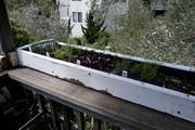 My balcony AP experiment