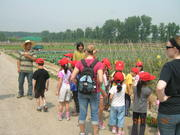 Farm school & CSA Production Ground