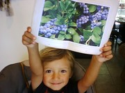 My Boy entered a Poem Contest & Won a Blueberry Growing Guide.