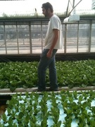 Will at Greenhouse