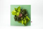 印象風綠繪-側種草花