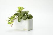 積木組合花盆-白