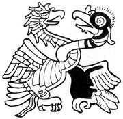 eagle and condor