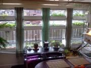 Window AP system