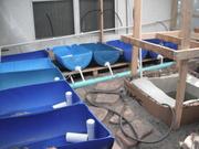 aquaorganics 2012