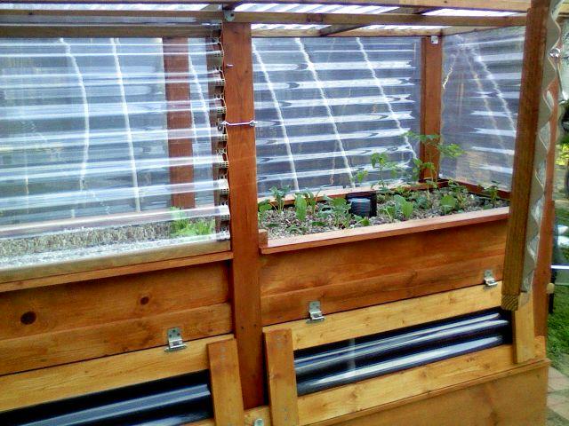 Critter-proof Aquaponics Greenhouse