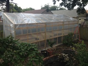 greenhouse with plastic