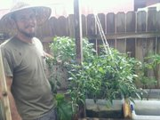 Me and my Crazy Hydro Pepper