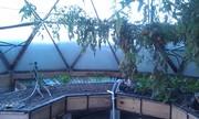 Dome in Blizzard 2013
