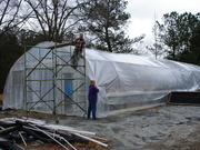 Greenhouse roof - wind starting up again