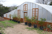 Outside of Greenhouse