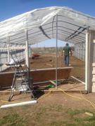 green house progress