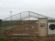 greenhousebuild