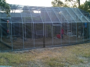 PVC greenhouse 24ft x 26ft done