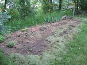 Garden Part 1
