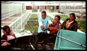 future farmers from Africa