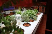 Seeding tables