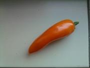 Micro paprika