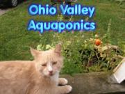 Ohio Valley Aquaponics Logo 2